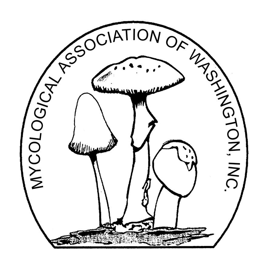 logo for Mycological Association of Washington, DC